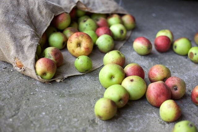 food and beverage - food waste apples bag scattered